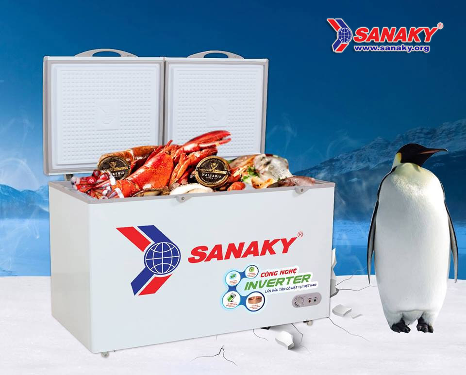 Tủ đông Sanaky Smart Inverter VH-3699A3