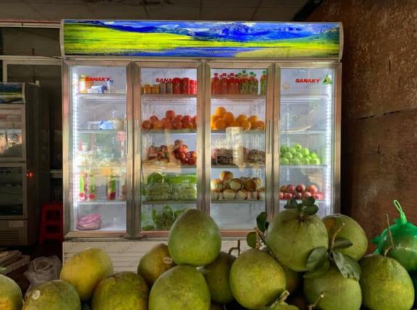 Tủ mát siêu thị 4 cánh Sanaky VH-2209HP