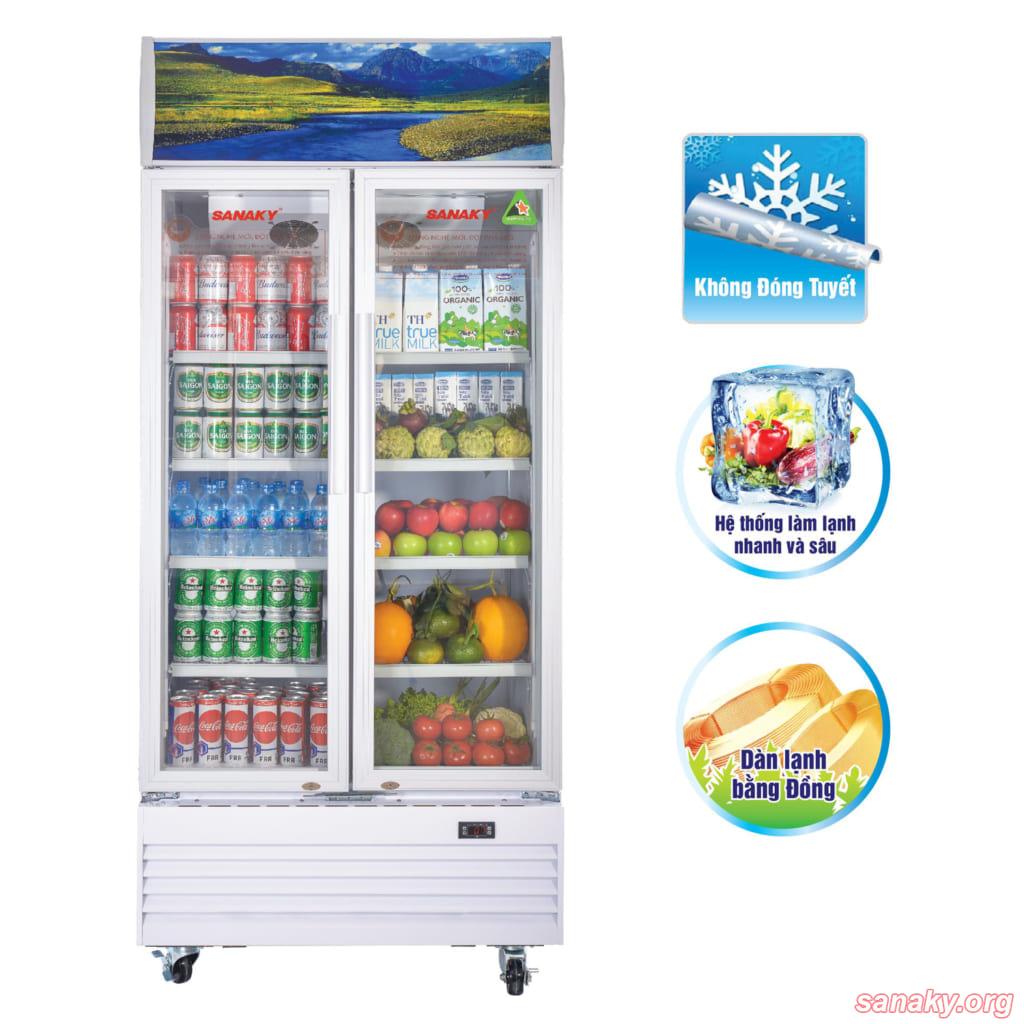 Tủ mát siêu thị Sanaky VH-6009HP
